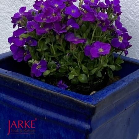 Teraccotta Blumentopf Blau